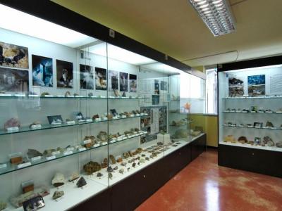 Lovere, Museo Civico di Scienze Naturali
