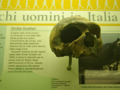 Immagine descrittiva - CC BY-SA Di Bramfab - Opera propria, CC BY-SA 4.0, https://commons.wikimedia.org/w/index.php?curid=73093679
