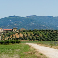 Visiting our farm means to be a part of a modern reality but with ancient rhythms, least of all, human.