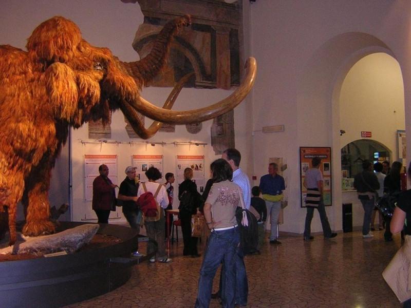 Bergamo, Museo Civico di Scienze Naturali Enrico Caffi