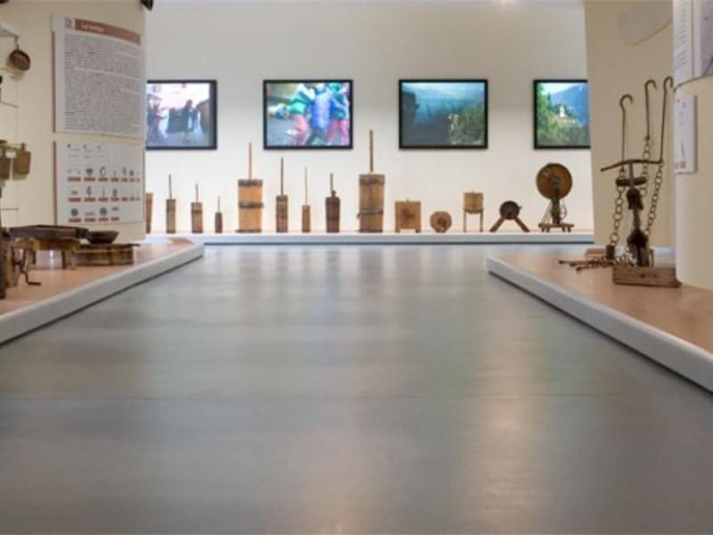 Montichiari, Museo Demiologico Giacomo Bergomi