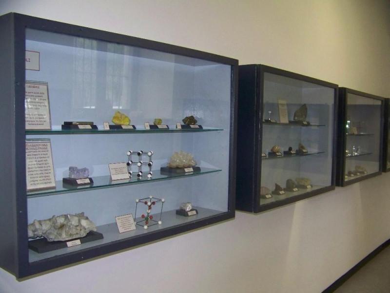 Voghera, Civico Museo di Scienze Naturali G. Orlandi