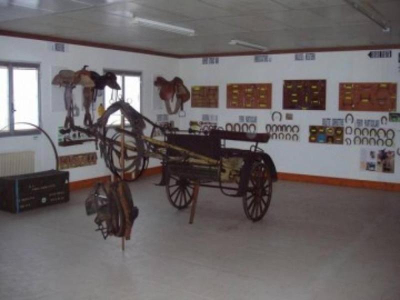 Museo del cavallo e degli attrezzi rurali