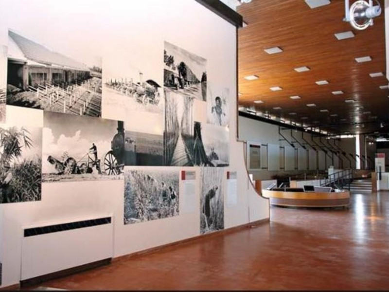 Museo territoriale