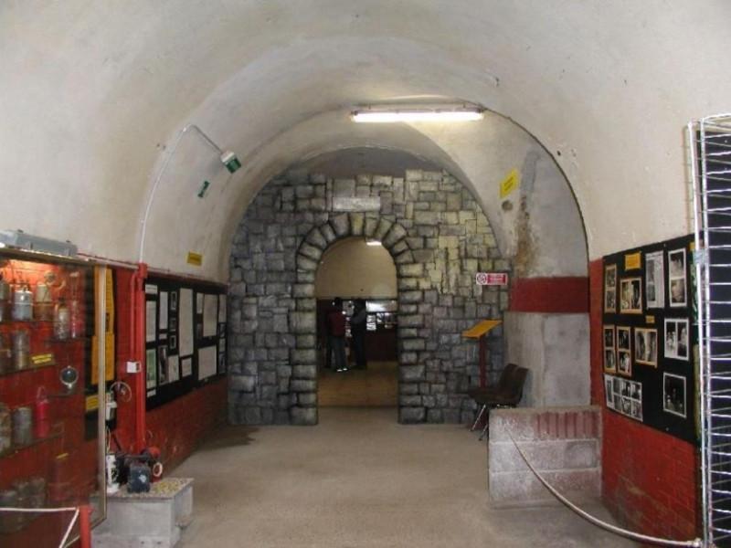 Speleovivarium interno di una sala espositiv