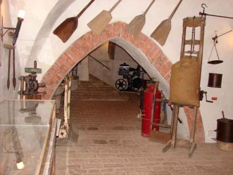 Monticelli d'Ongina, Acquario e Museo Etnografico del Po