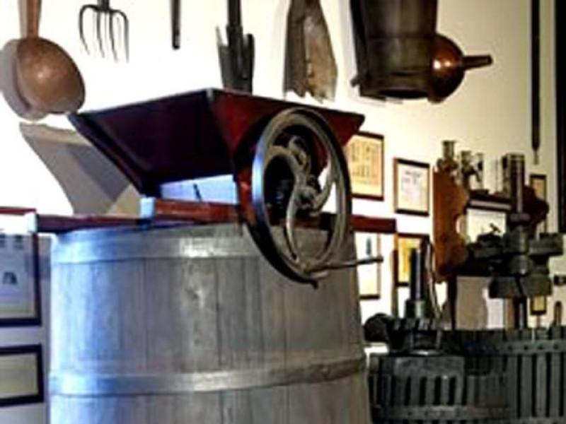"""Vigolzone, Museo della Vite e del Vino """"F. Pizzamiglio"""""""