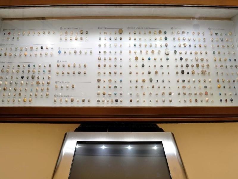 Egitto: Collezione Magnarini                Collezione Magnarini di 429 scarabei-sigillo egizi
