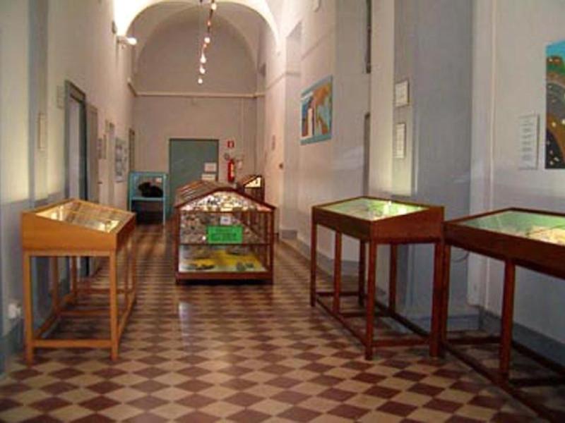 Fidenza, Museo dei Fossili dello Stirone