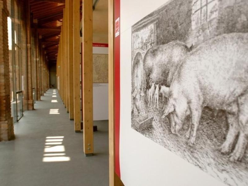 Langhirano, Museo del Prosciutto di Parma