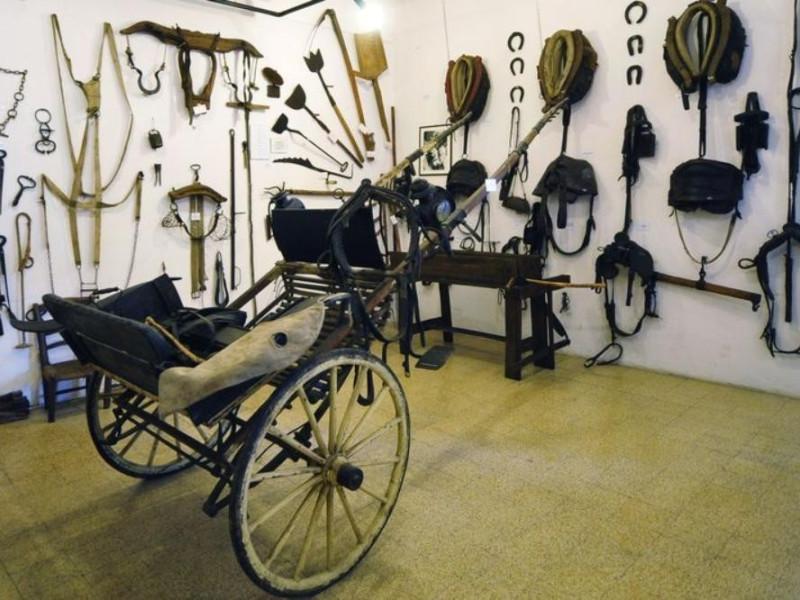 Bastiglia, Museo della Civiltà Contadina