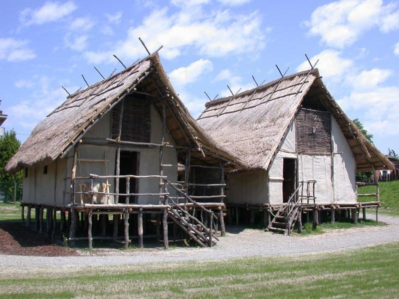 Castelnuovo Rangone, Parco Archeologico e Museo all'Aperto della Terramara di Montale