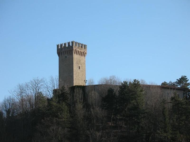 Montese, Museo Storico e Forum Artis Museum