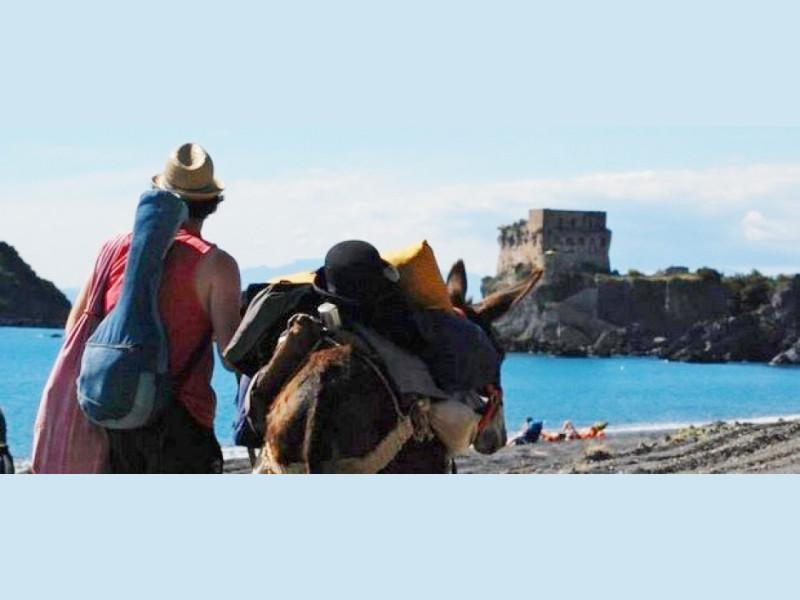 Risultati immagini per viaggi slow  asinello  italia