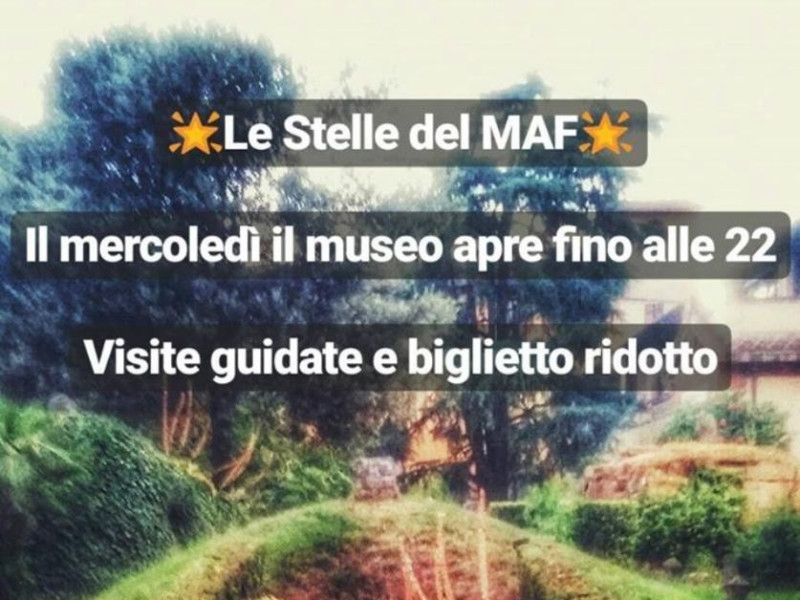 Le stelle del MAF