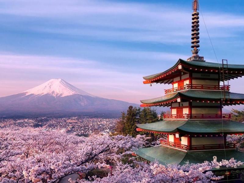 Rassegna di film giapponesi  Cinematographic Journey