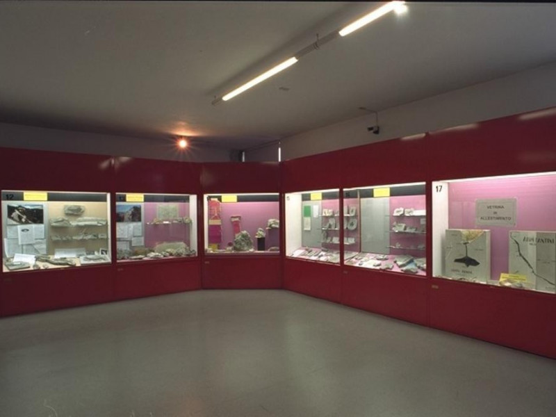 Faenza, Museo Civico di Scienze Naturali