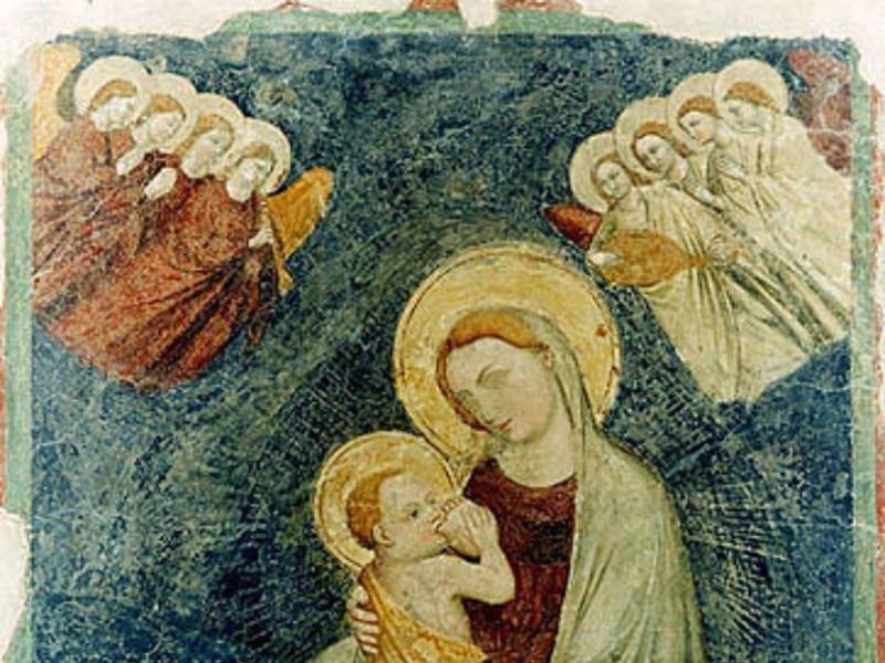 """Galeata, Museo Civico """"Mons. Domenico Mambrini"""""""