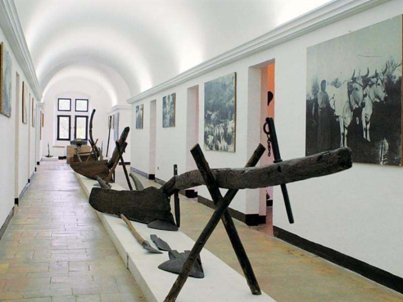 """Museo di Storia della Mezzadria """"Sergio Ansel"""