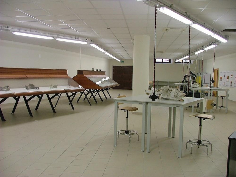 Laboratorio di restauro archeologico e paleon