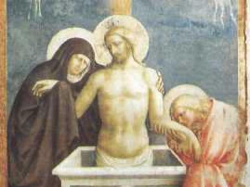 Empoli, MUSEO DELLA COLLEGIATA DI SANT'ANDREA