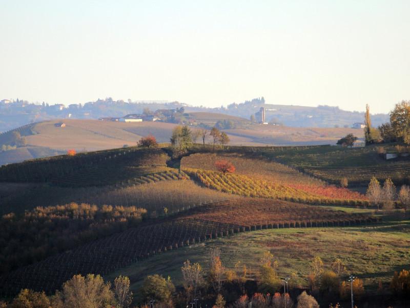 Paesaggi vitivinicoli del Piemonte - Siti UNESCO