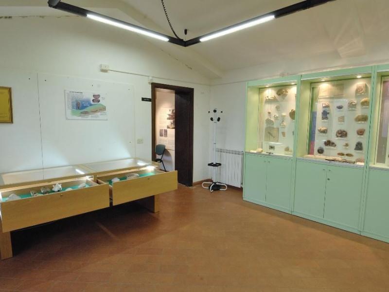 Laboratorio ecologico di Geo-paleontologia. E Fedeli, Marcello; jpg; 2126 pixels; 1417 pixels