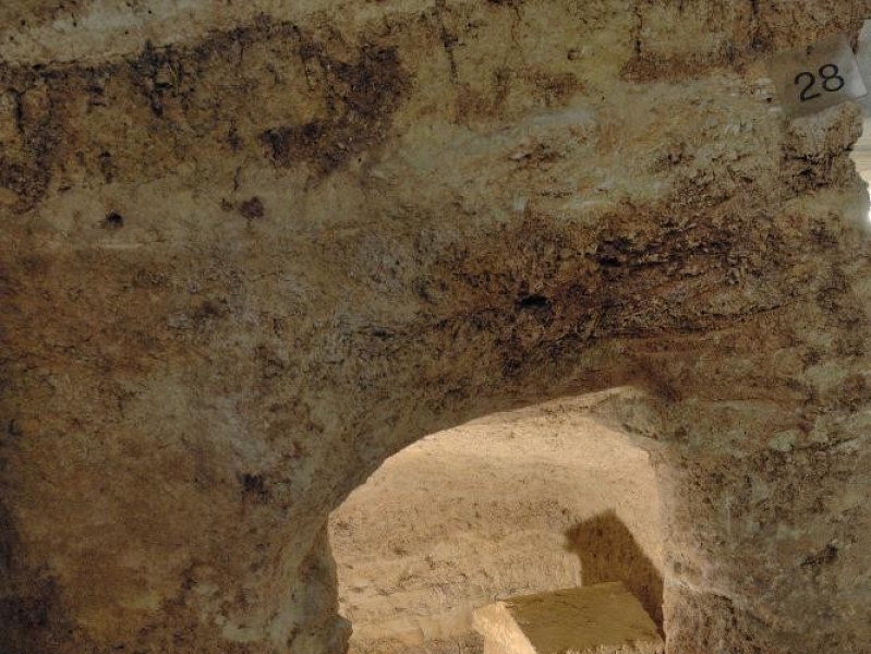 Scavi.Necropoli etrusca di Strozzacapponi. Fedeli, Marcello; jpg; 1417 pixels; 2126 pixels