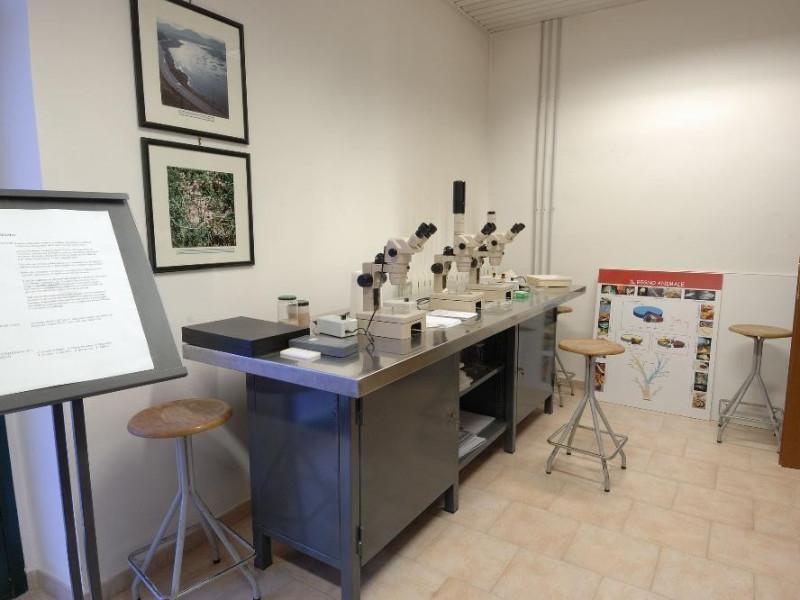 Museo naturalistico del parco di Colfiorito.  Fedeli, Marcello; jpg; 2126 pixels; 1417 pixels