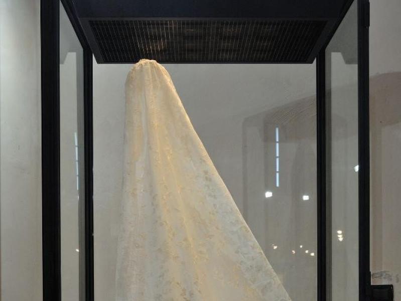 Ars Panicalensis. Velo.  Bellu, Sandro; jpg; 1417 pixels; 2126 pixels