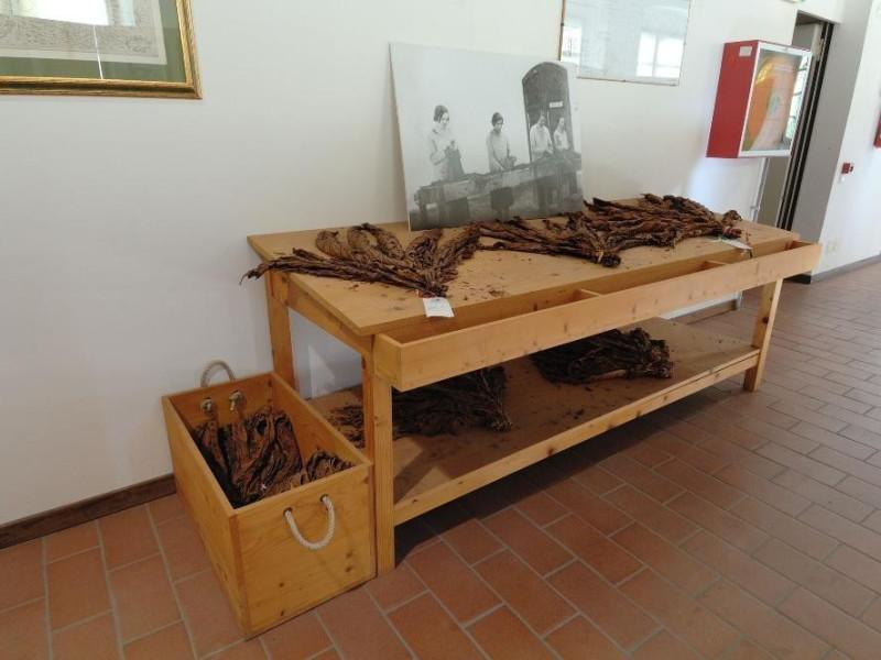 Museo storico e scientifico del Tabacco.Tavol Fedeli, Marcello; jpg; 2126 pixels; 1417 pixels