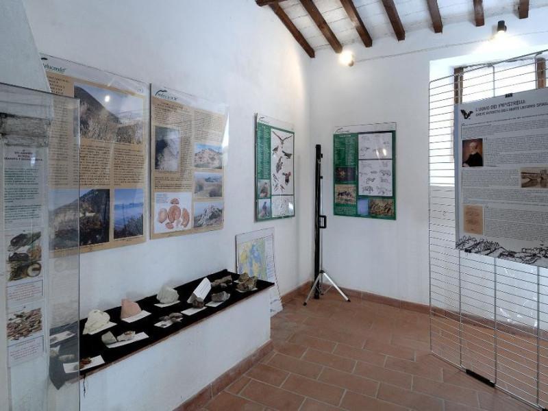 Centro visita di Monteluco. Sala espositiva. jpg; 2126 pixels; 1417 pixels