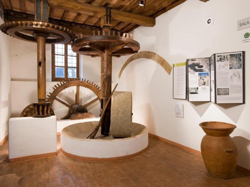 Museo dell'Olivo e dell'Olio. Sala espositiva jpg; 1417 pixels; 945 pixels