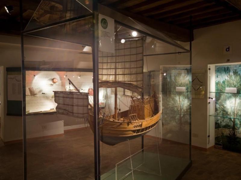 Museo dell'Olivo e dell'Olio. Vetrine esposit jpg; 1417 pixels; 945 pixels