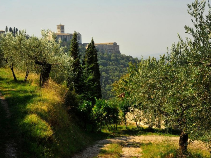 Sentieri Bosco di San Francesco, Assisi, FAI-Fondo Ambientale Italiano; jpg; 1200 pixels; 798 pixels