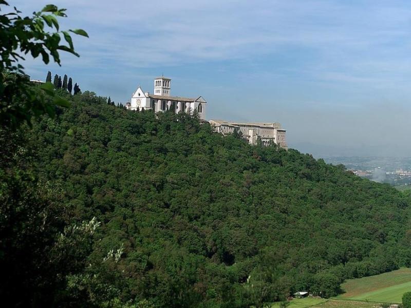 Veduta della Basilica di San Francesco Bosco di San Francesco, Assisi, FAI-Fondo Ambientale Italiano; jpg; 1213 pixels; 803 pixels
