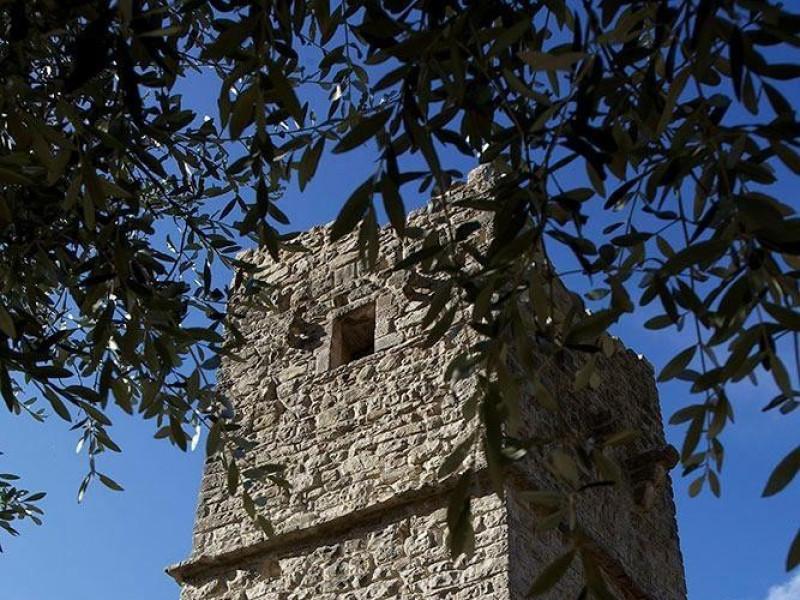 Torre Bosco di San Francesco, Assisi, FAI-Fondo Ambientale Italiano; jpg; 667 pixels; 1000 pixels