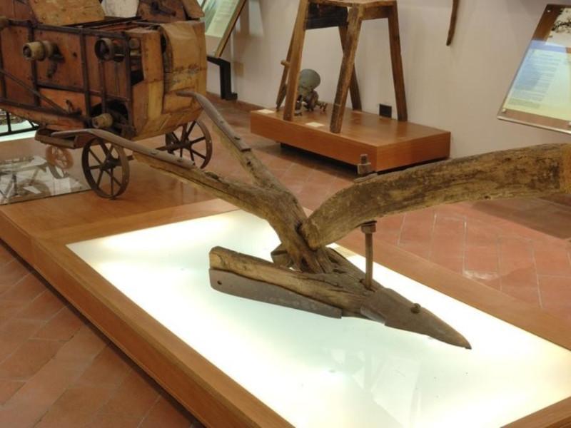 Interno. Museo della civiltà contadina la ter Fedeli, Marcello; jpg; 768 pixels; 511 pixels