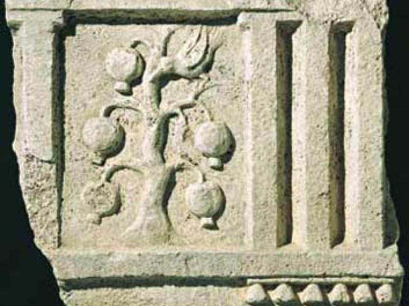 Fregio dorico di monumento funerario. Fine I  Giorgetti, Alessio/ Bellu, Sandro/ Paparelli, Daniele; jpg; 353 pixels; 300 pixels