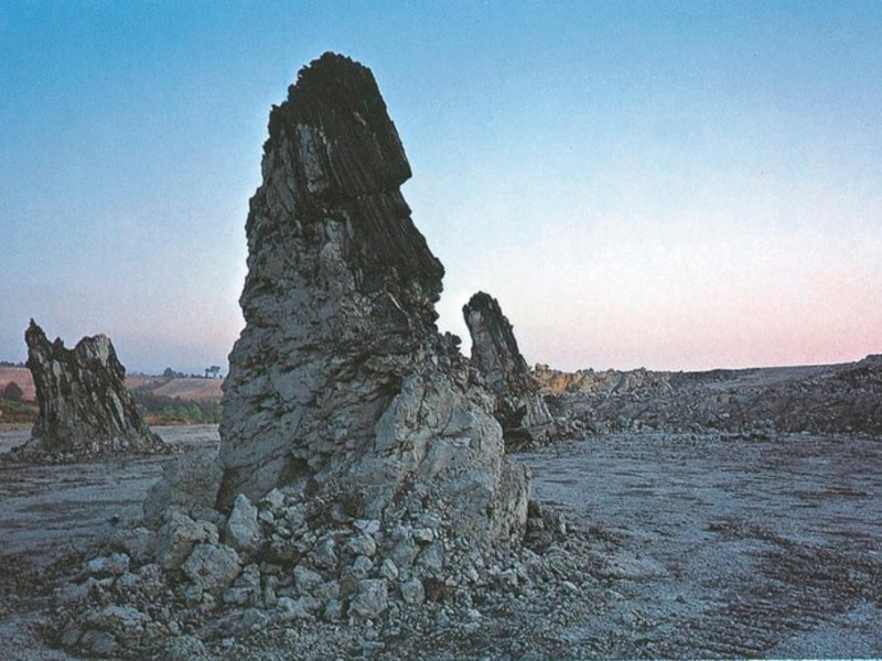 Foresta Fossile di Dunarobba, tronchi jpg; 768 pixels; 524 pixels