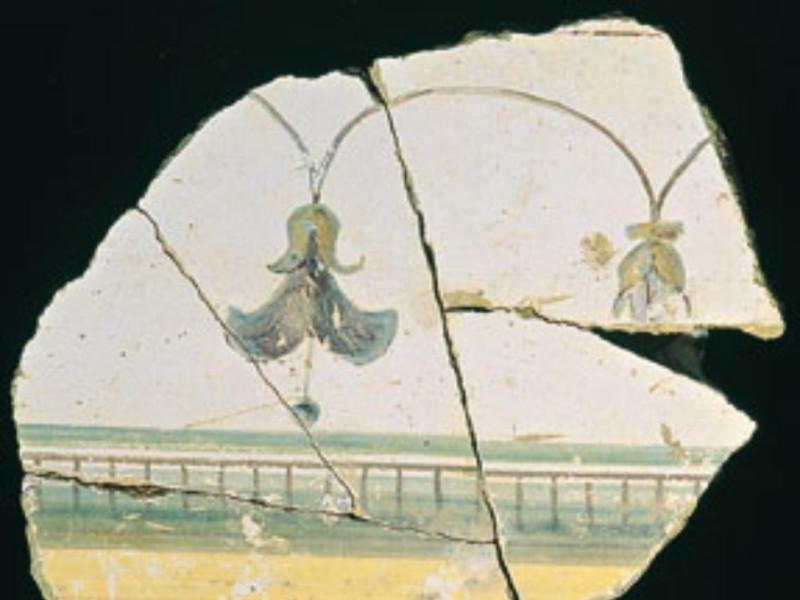 Antiquarium comunale. Affreschi da villa roma Giorgetti, Alessio; jpg; 287 pixels; 300 pixels