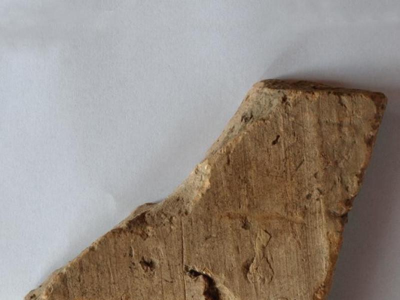 """Centro visita e documentazione """"U.Ciotti"""". La Bellu, Sandro; jpg; 2592 pixels; 3872 pixels"""