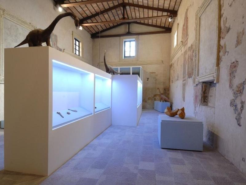 Mostra permanente di paleontologia. Sala espo Fedeli, Marcello; jpg; 2126 pixels; 1417 pixels