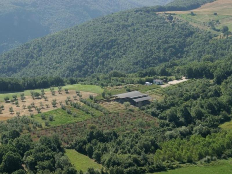 Veduta panoramica. Università di Perugia – Scavo di Scoppieto; jpg; 768 pixels; 512 pixels