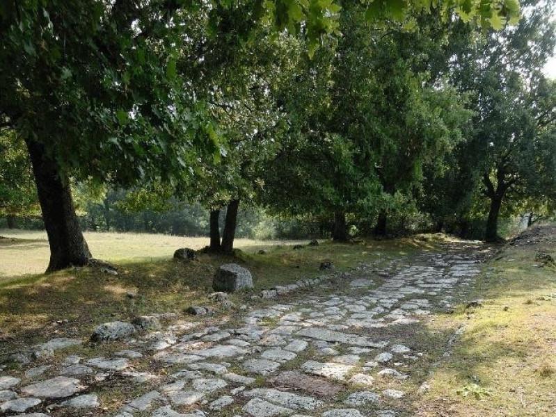 Parco archeologico di Carsulae. Via Flaminia. ; jpg; 1417 pixels; 2126 pixels