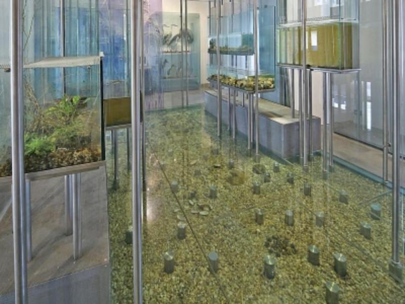 Museo del Fiume