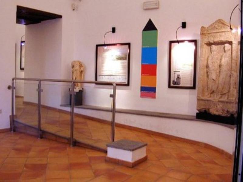Museo, particolare dell'allestimento con stel
