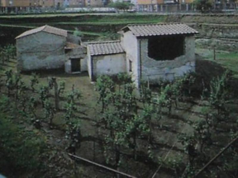 Villa Regina, veduta d'insieme della villa co