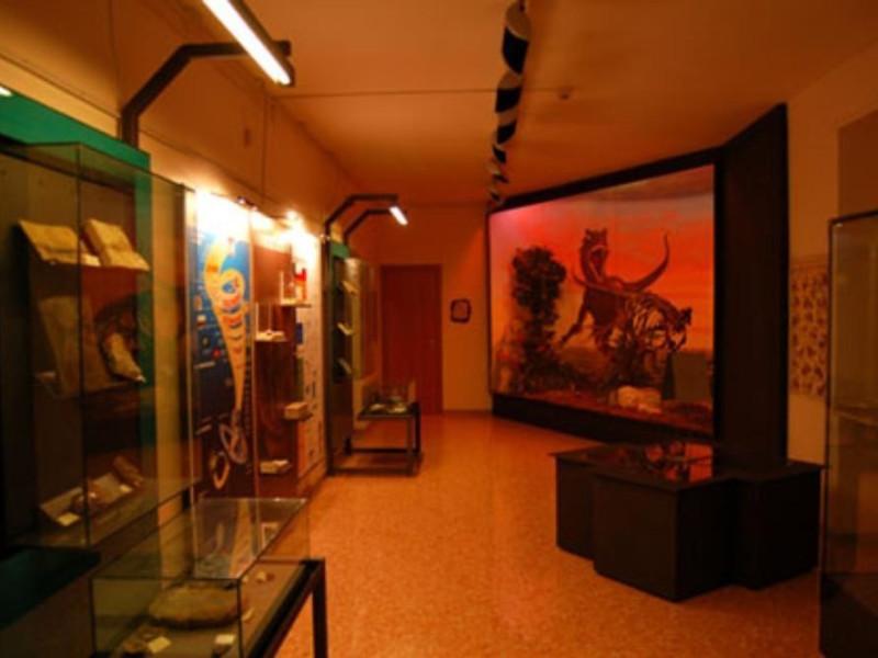 Foggia, Museo Provinciale di Storia Naturale