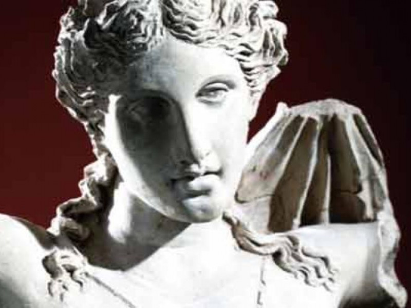 """Lucera, Museo Civico """"Giuseppe Fiorelli"""""""